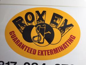 rox-ex2